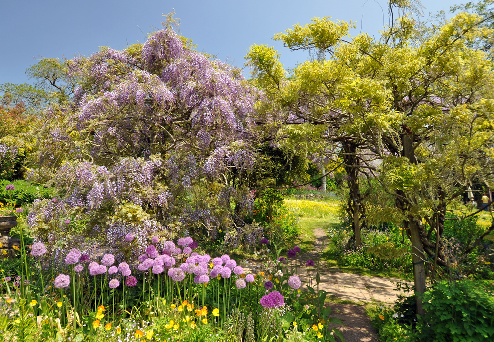 12 UK Garden tour Marwood English Garden