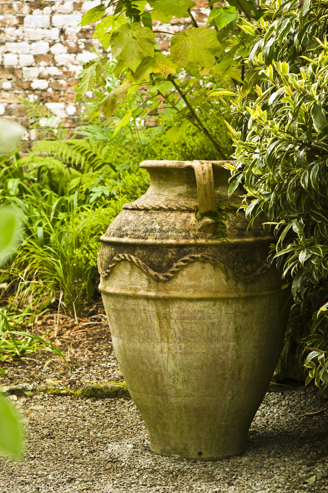 3 UK Garden Tour Trengwainton Gardens of the National Trust in Cornwall