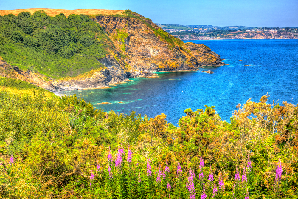 4 UK Garden tour Cornwall St Austell Bay