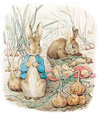 beatrix-potter-peter-rabbit